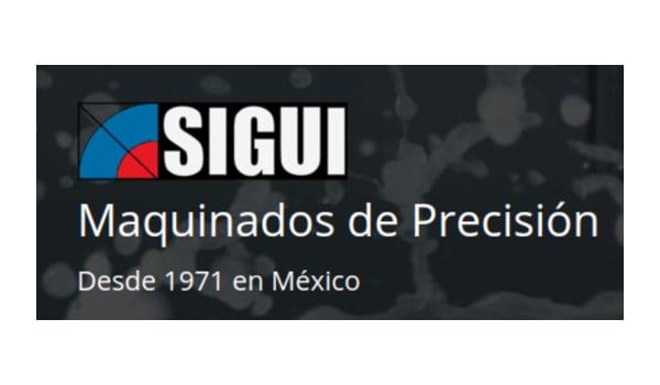 SEO para Sigui - México